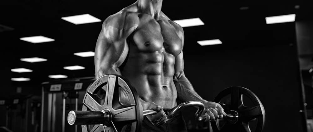 Muscle-and-Body-Building-Training
